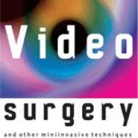 Videosurgery and other miniinvasive techniques
