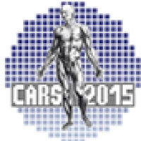Computer Assisted Radiology and Surgery 29th International Congress