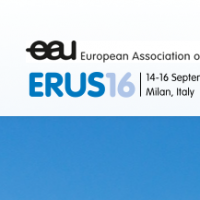 13th Meeting of the EAU Robotic Urology Section