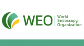 WEO Colorectal Cancer Screening Committee Meeting 2017 – Europe