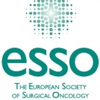 ESSO Course on the Management of High Risk Patients for Breast Cancer