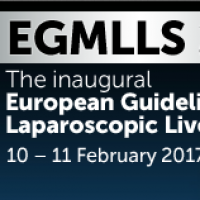 European Guidelines Meeting on Laparoscopic Liver Surgery (EGMLLS 2017)