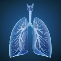 Understanding and Treating Respiratory Disease: A persistent challenge