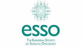 ESSO Course on Liver Surgery: from basic to advanced care