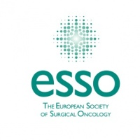 ESSO Course on Liver Surgery: from basics to advanced care