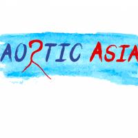 Aortic Asia 2017