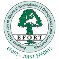EFORT 2017 Annual Congress