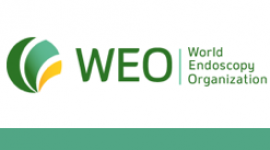 WEO Colorectal Cancer Screening Committee Meeting 2017 – Americas