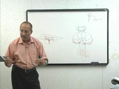 Doctor Najeeb • MEDtube net