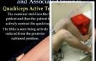 Knee Anatomy and Injuries