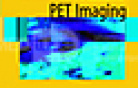 Pediatric PET Imaging.pdf